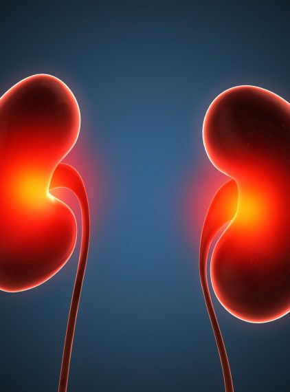 Chore nerki nie bolą. Co poza cukrzycą może je niszczyć?