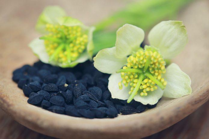 Właściwości nasion czarnuszki