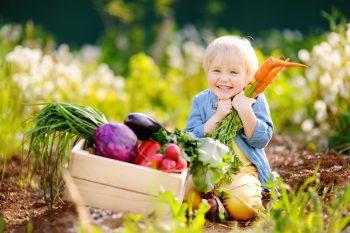 Żywność ekologiczna. Czym jest i jaką rolę pełni w diecie dziecka?