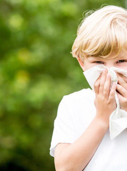 Te rośliny wspierają walkę z infekcjami u dzieci