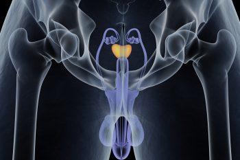 Rak prostaty – mężczyzno, nie bój się badania per rectum!