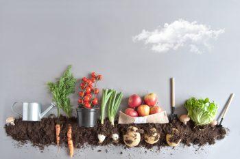 Wiosna i jej plony, czyli wpływ warzyw i owoców na nasze zdrowie